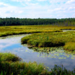 Dakota Wetlands Law and Compliance