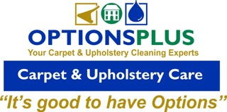 Website for OptionsPlus Property Services Inc.