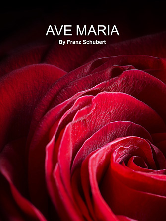Franz schubert ave maria sheet music violin