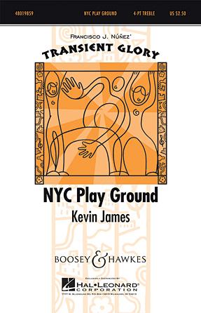 NYC Play Ground