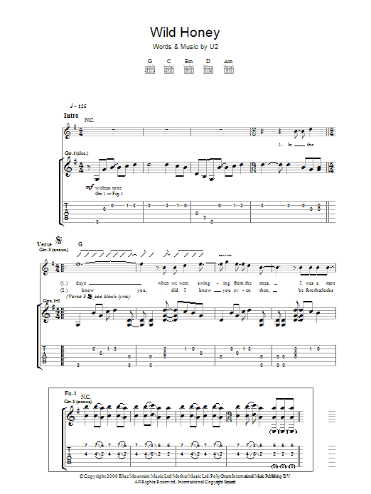 Wild Honey (Guitar Tab)