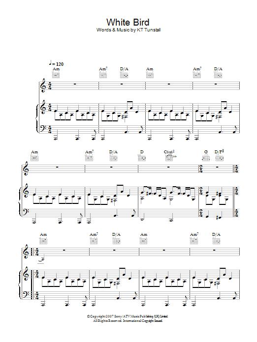 White Bird (Piano, Vocal & Guitar)