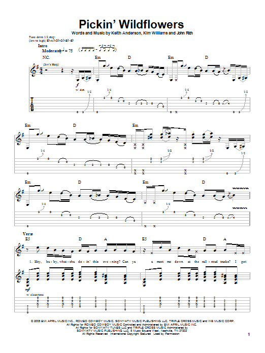 Tablature guitare Pickin' Wildflowers de Keith Anderson - Playback Guitare