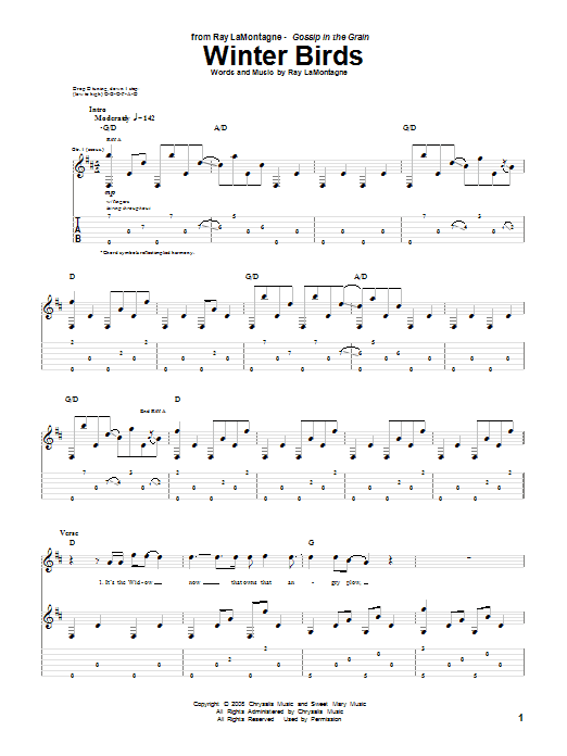 Tablature guitare Winter Birds de Ray LaMontagne - Tablature Guitare