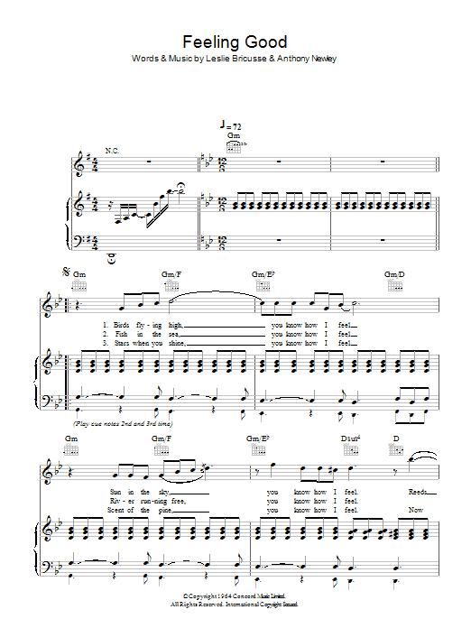 Feeling Good (Piano, Vocal & Guitar)