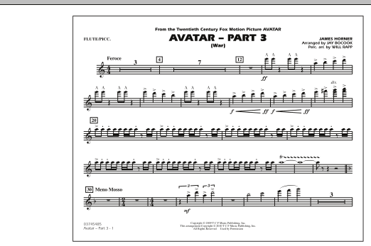 Avatar: Part 3 (War) - Flute/Piccolo (Marching Band)