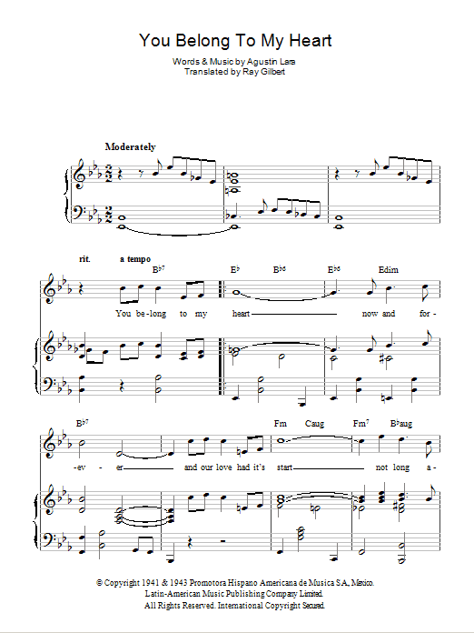 You Belong To My Heart (Solamente Una Vez) (Piano, Vocal & Guitar)