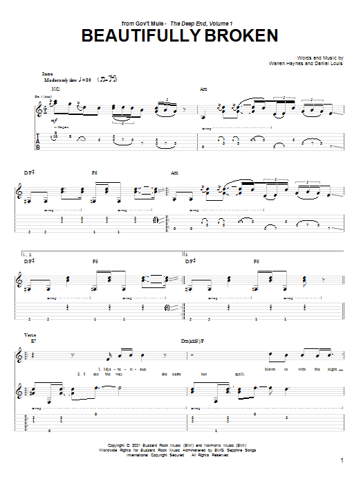 Tablature guitare Beautifully Broken de Warren Haynes - Tablature Guitare