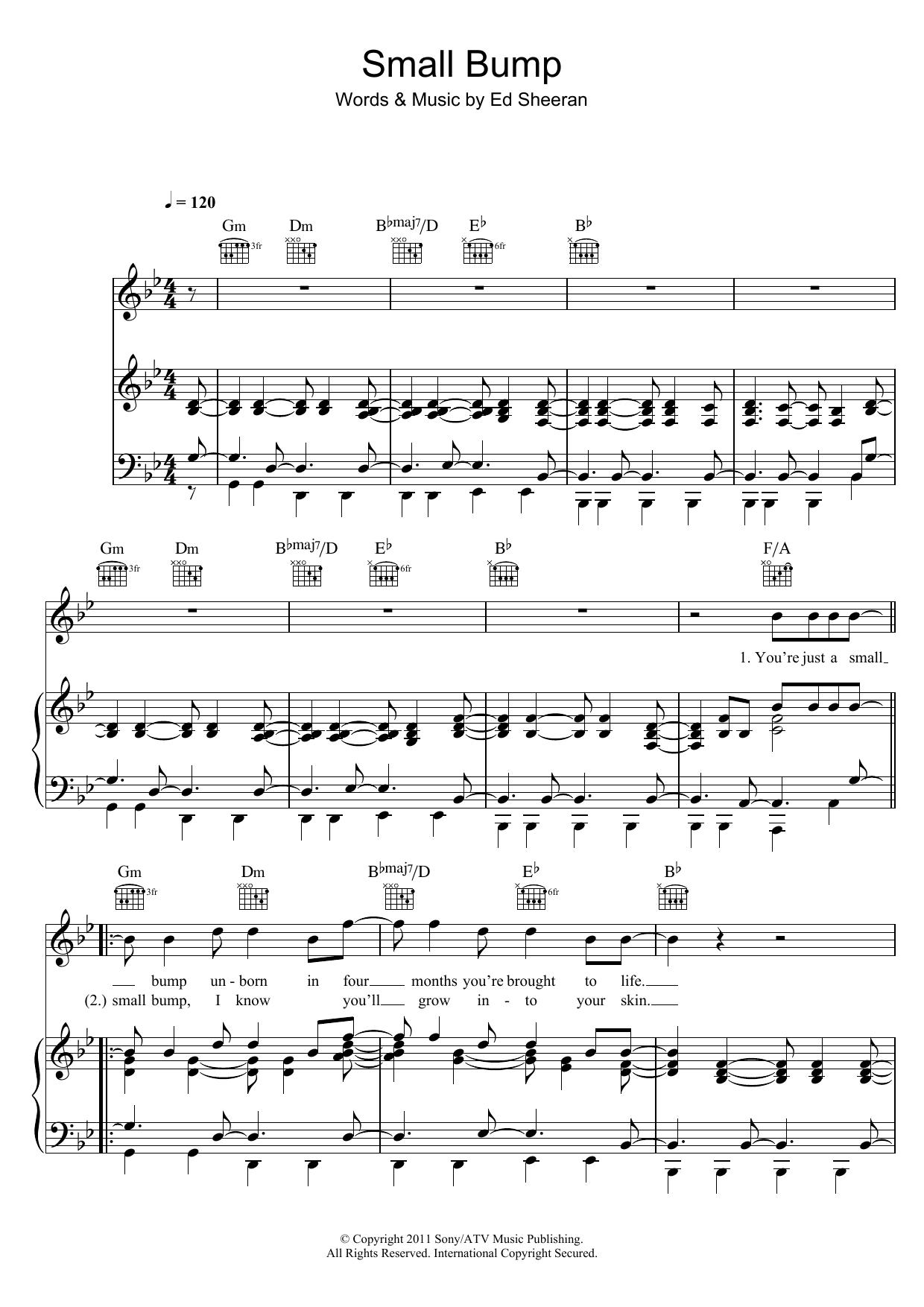 Small Bump   Sheet Music Direct