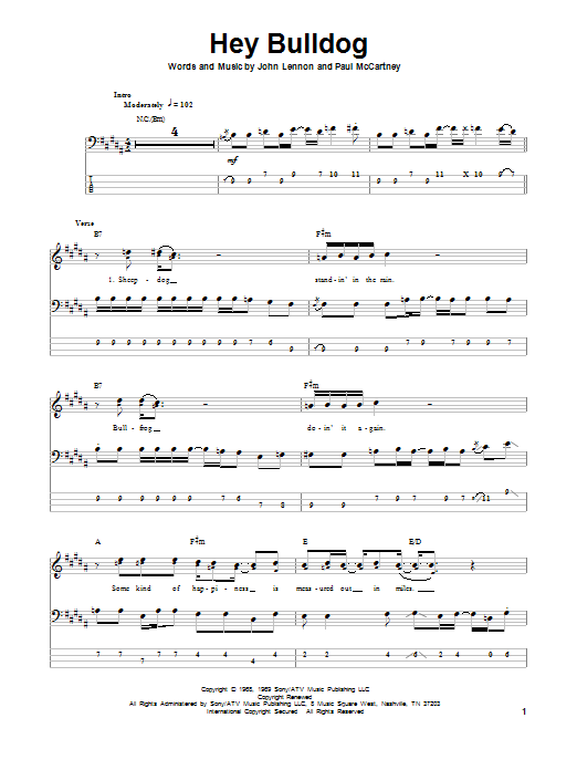 Tablature guitare Hey Bulldog de The Beatles - Tablature Basse