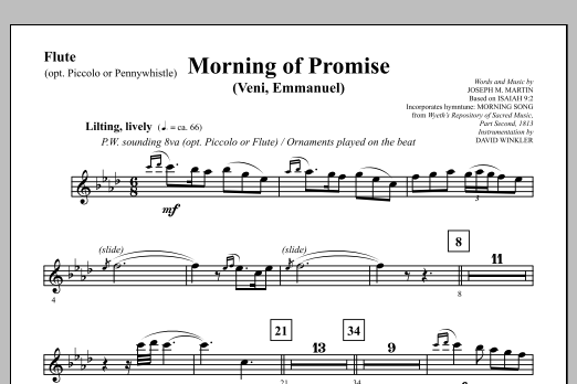 Morning of Promise - Flute (opt. Picc/Pennywhistle) (Choir Instrumental Pak)