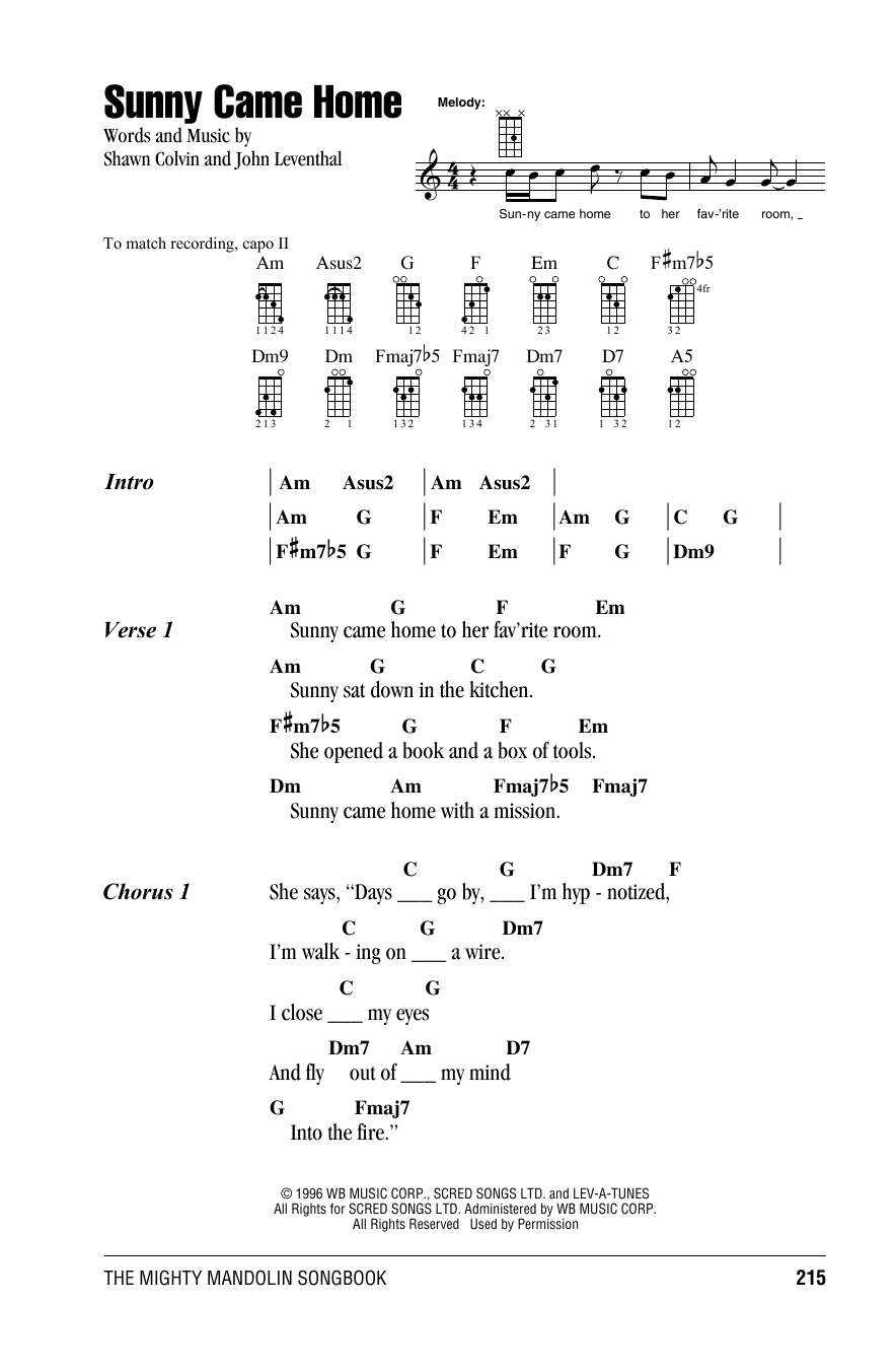 Tablature guitare Sunny Came Home de Shawn Colvin - Autre