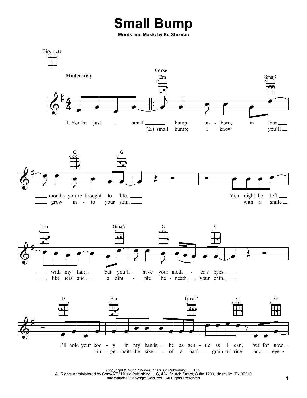 Small Bump Sheet Music
