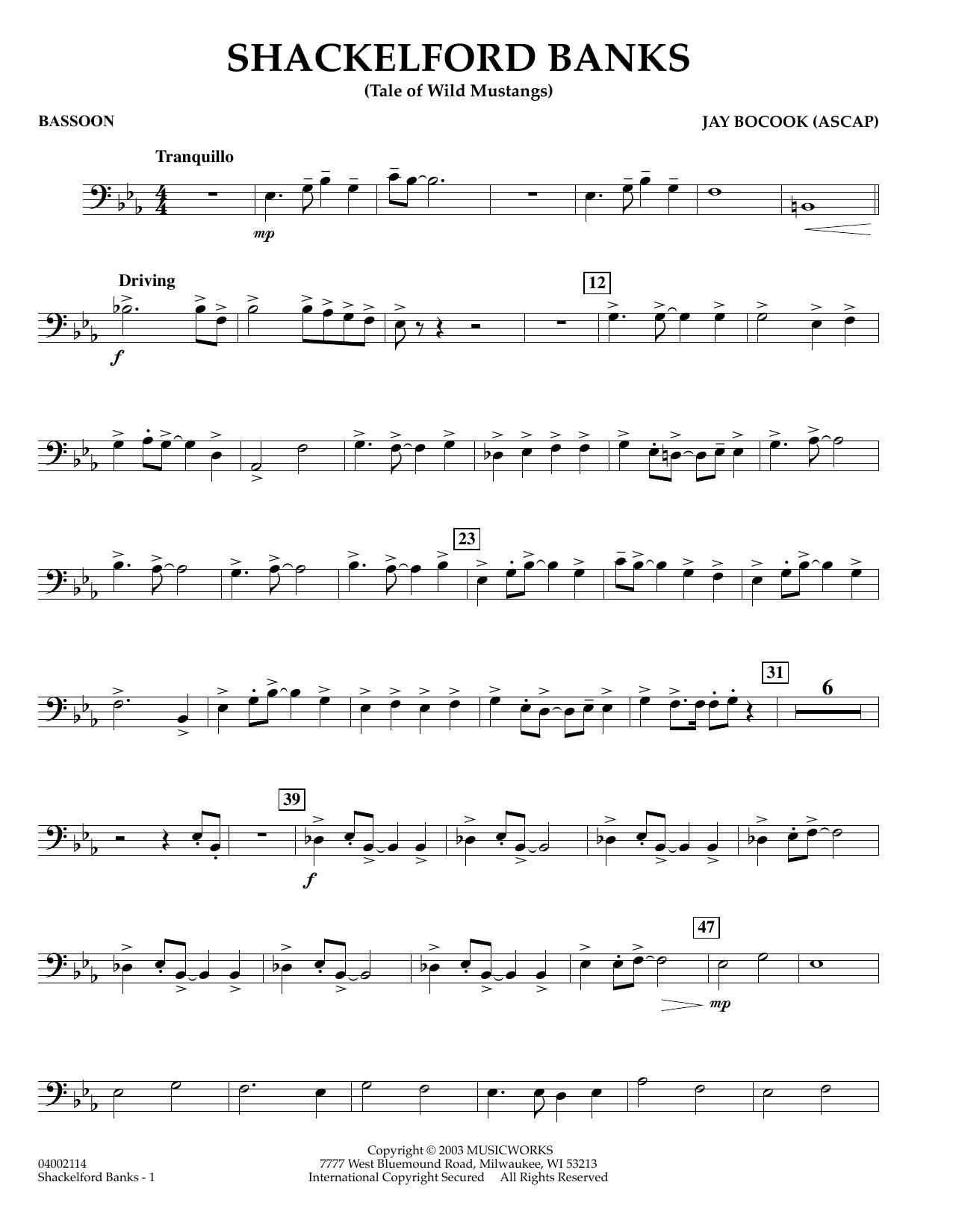 Shackelford Banks - Bassoon (Concert Band)