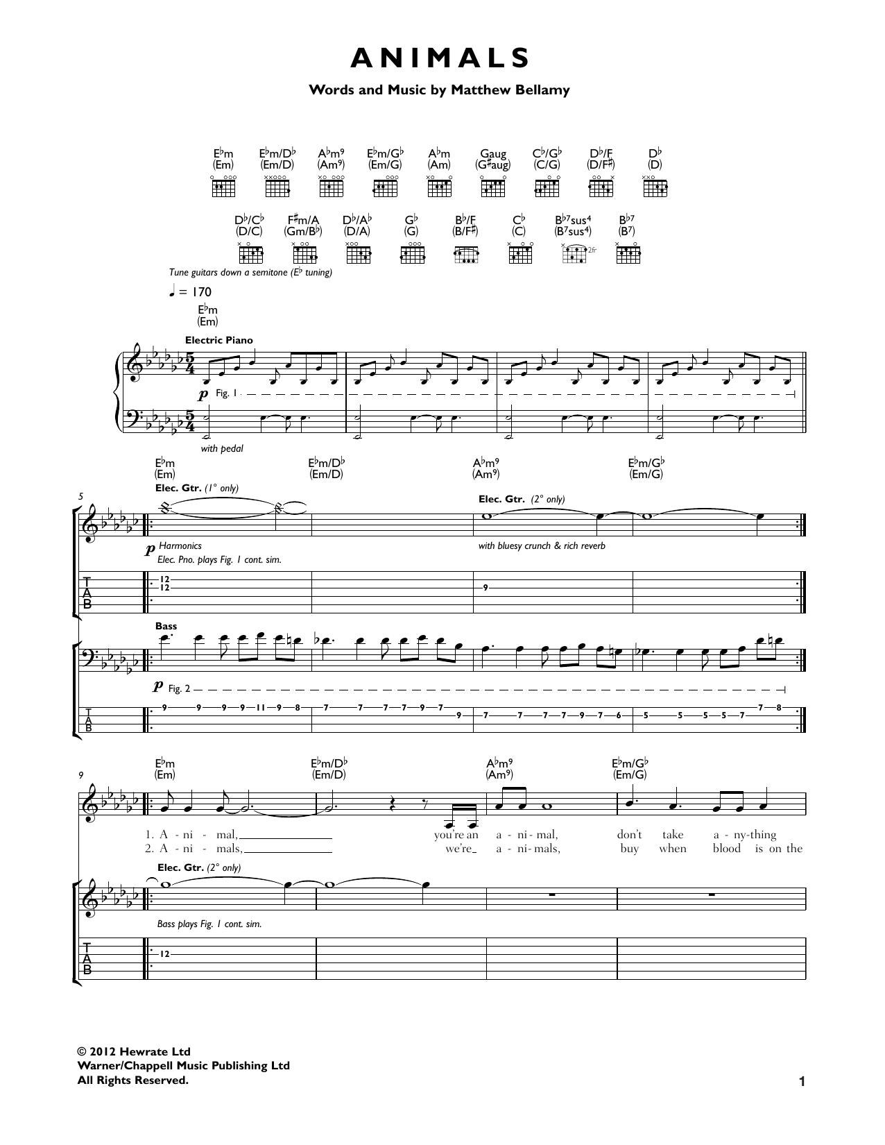 Animals Sheet Music