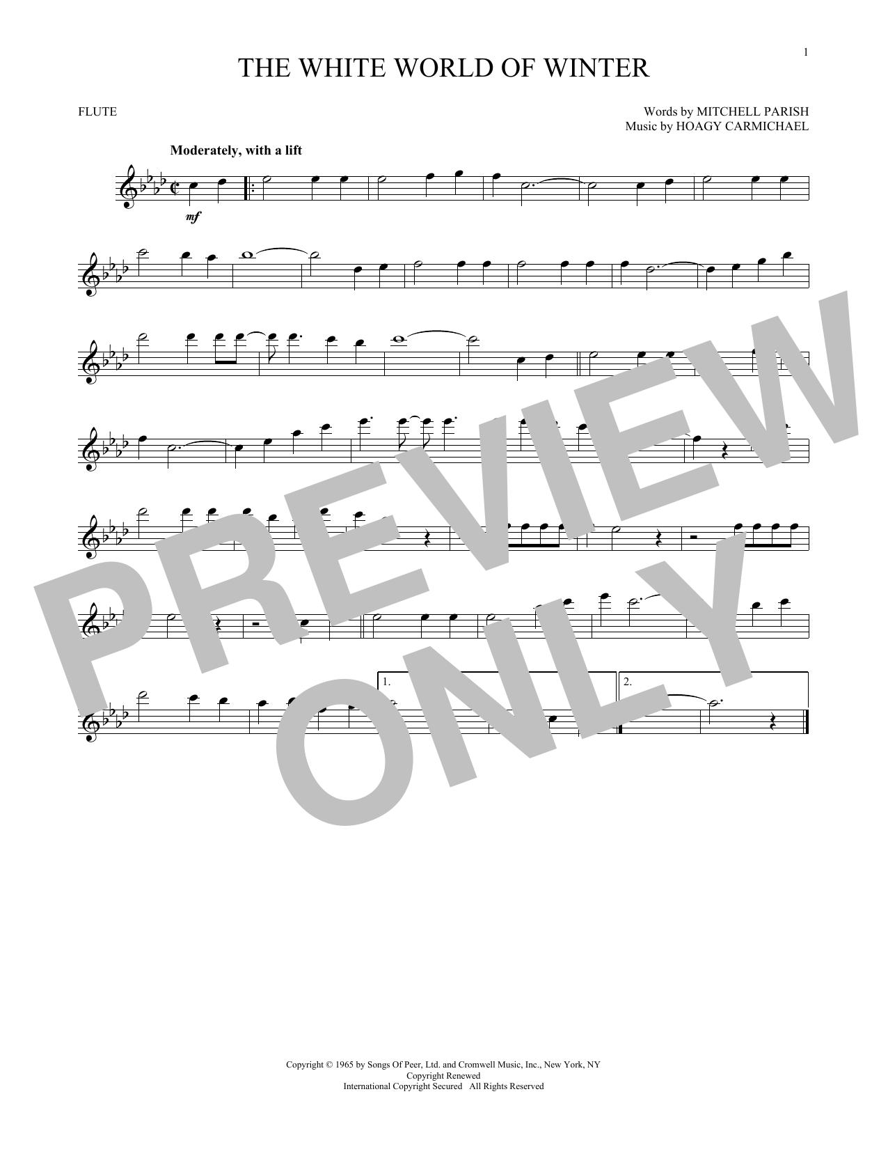 The White World Of Winter (Flute Solo)