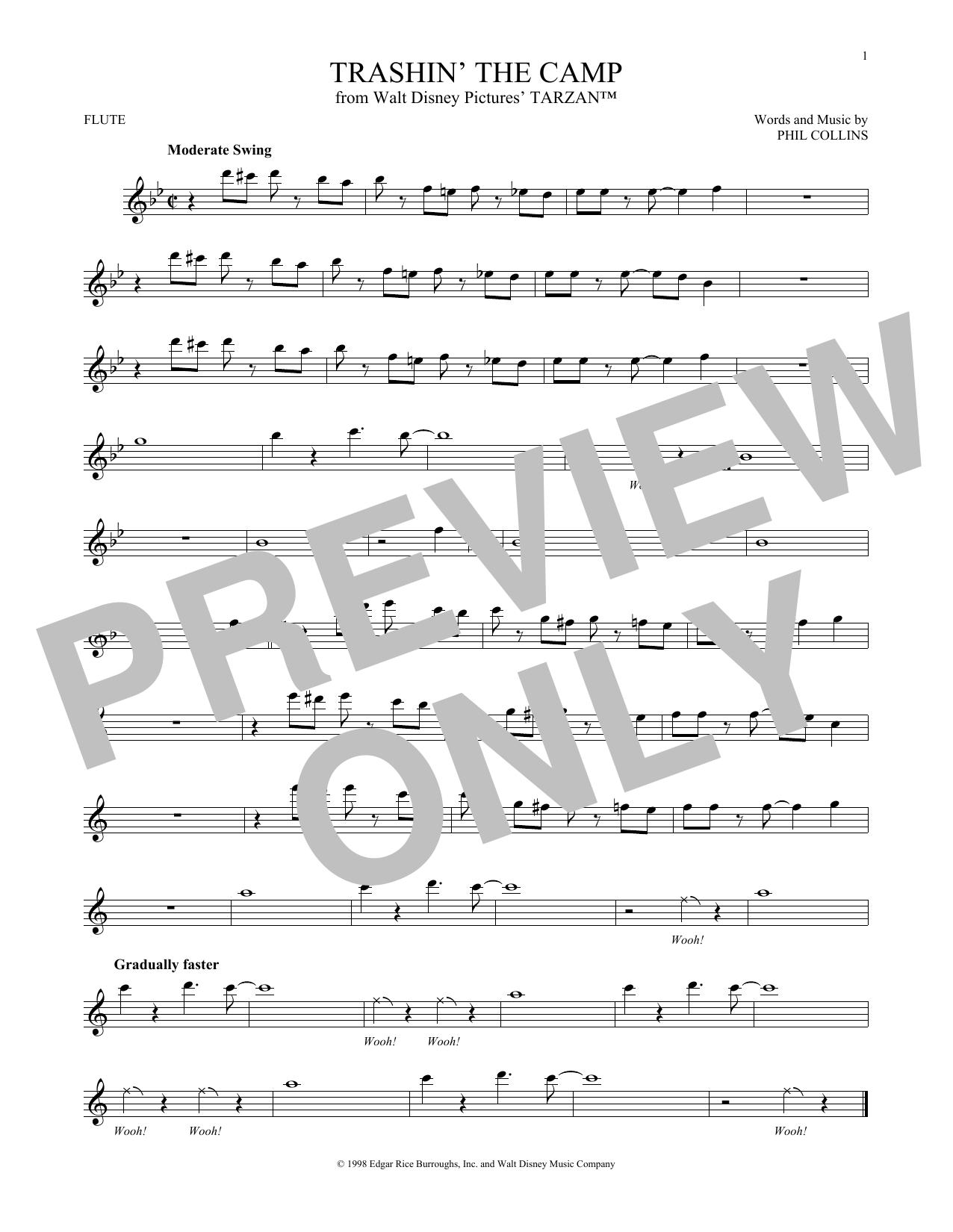 Partition flûte Trashin' The Camp de Phil Collins - Autre