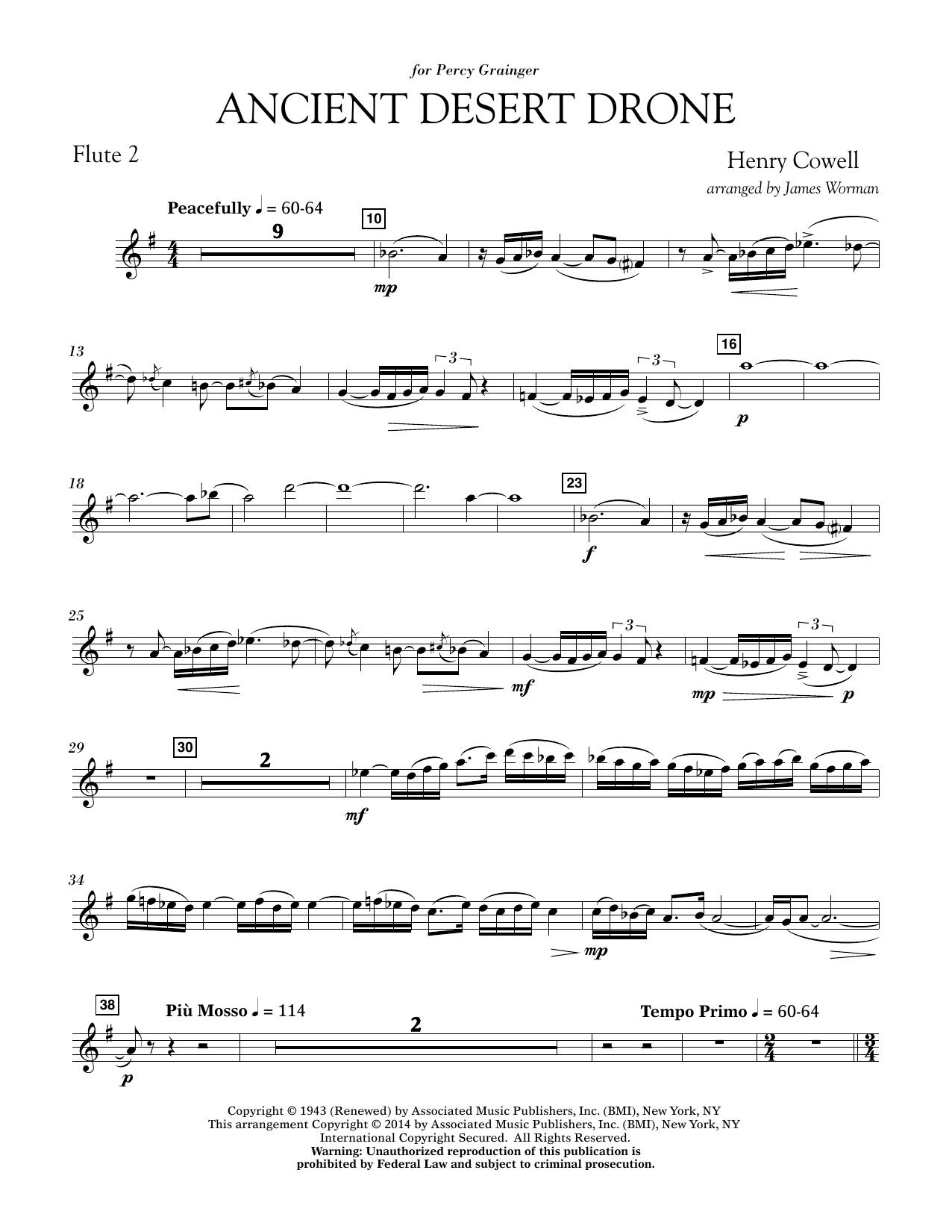 Ancient Desert Drone - Flute 2 (Concert Band)