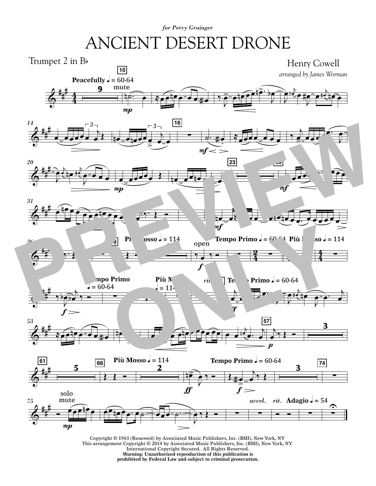 Ancient Desert Drone - Bb Trumpet 2 (Concert Band)