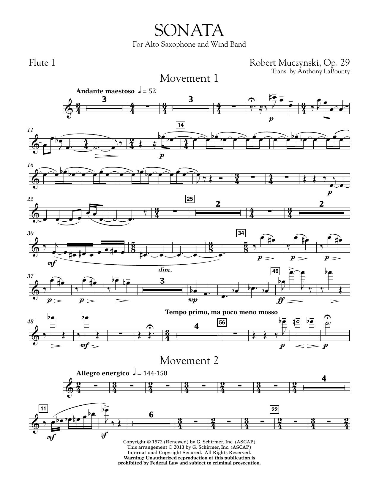 Sonata for Alto Saxophone, Op. 29 - Flute 1 (Concert Band)