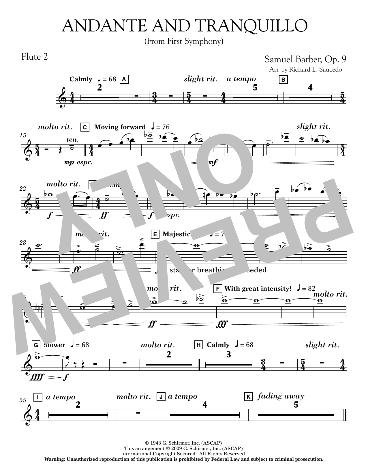 Andante and Tranquillo (from First Symphony) - Flute 2 Sheet Music