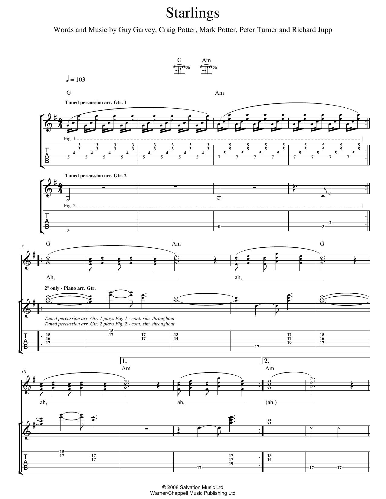 Starlings (Guitar Tab)