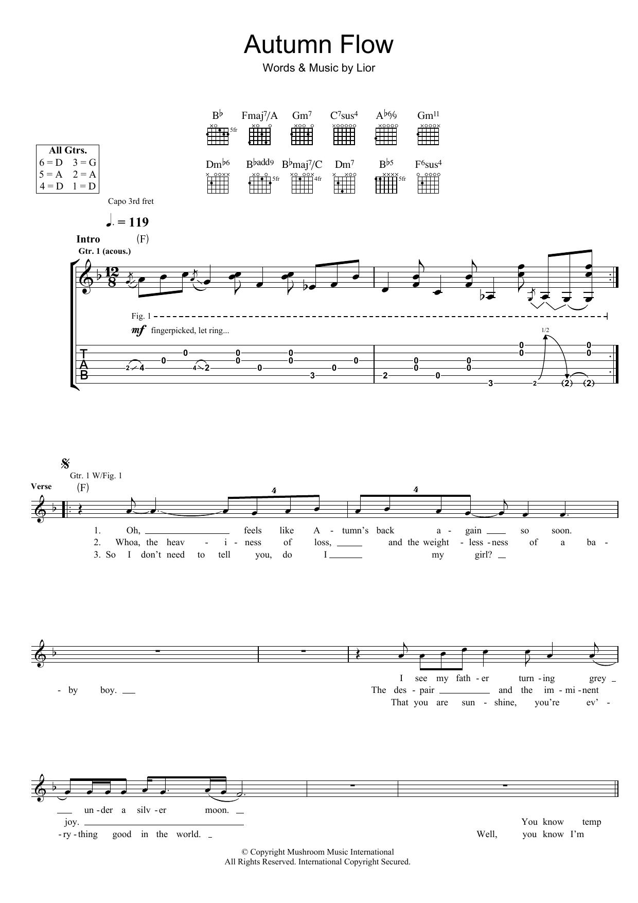 Autumn Flow (Guitar Tab)