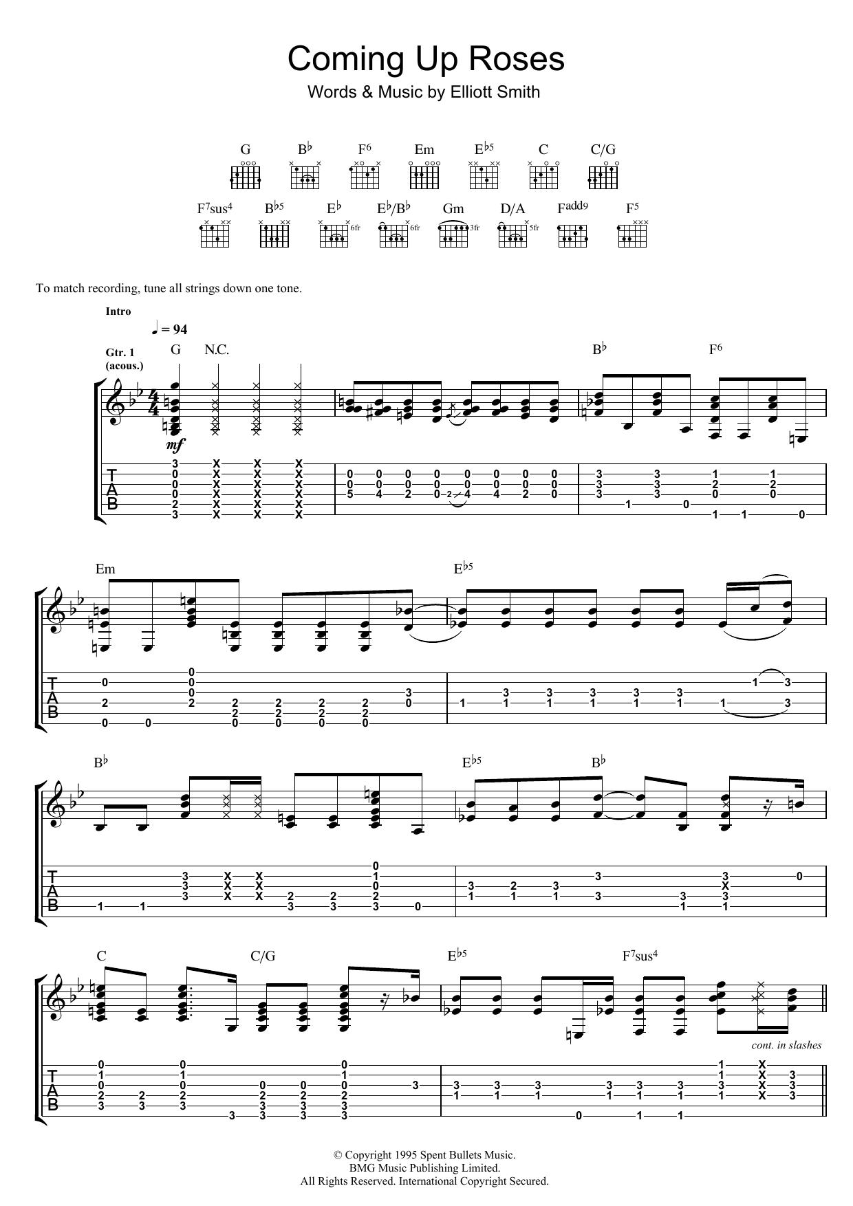 Coming Up Roses (Guitar Tab)