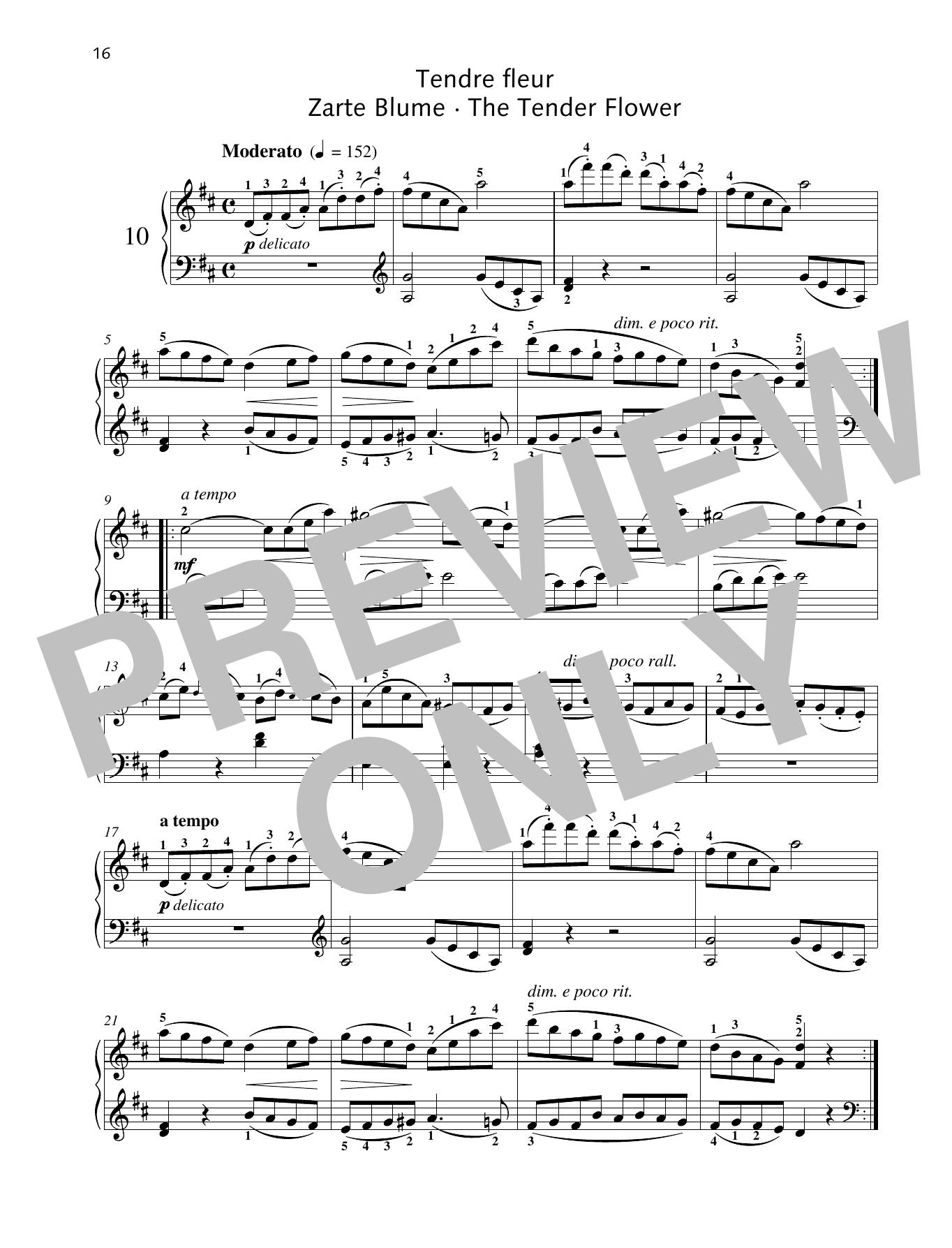 The Tender Flower Sheet Music