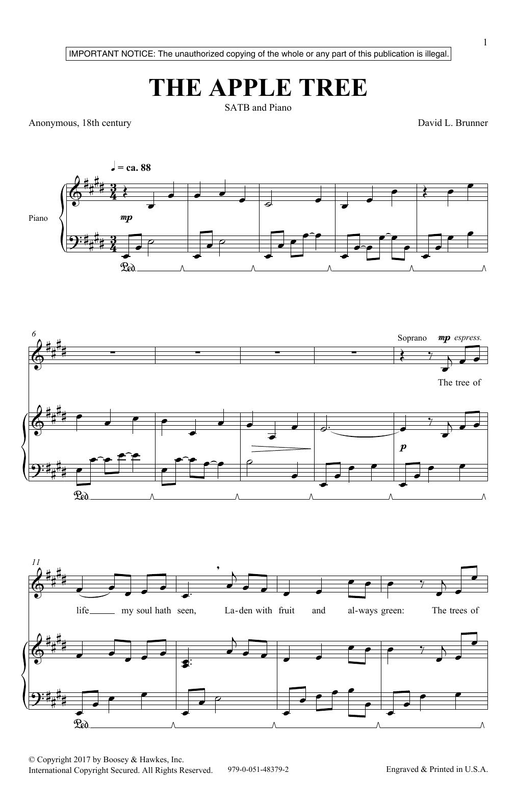 The Apple Tree (SATB Choir)