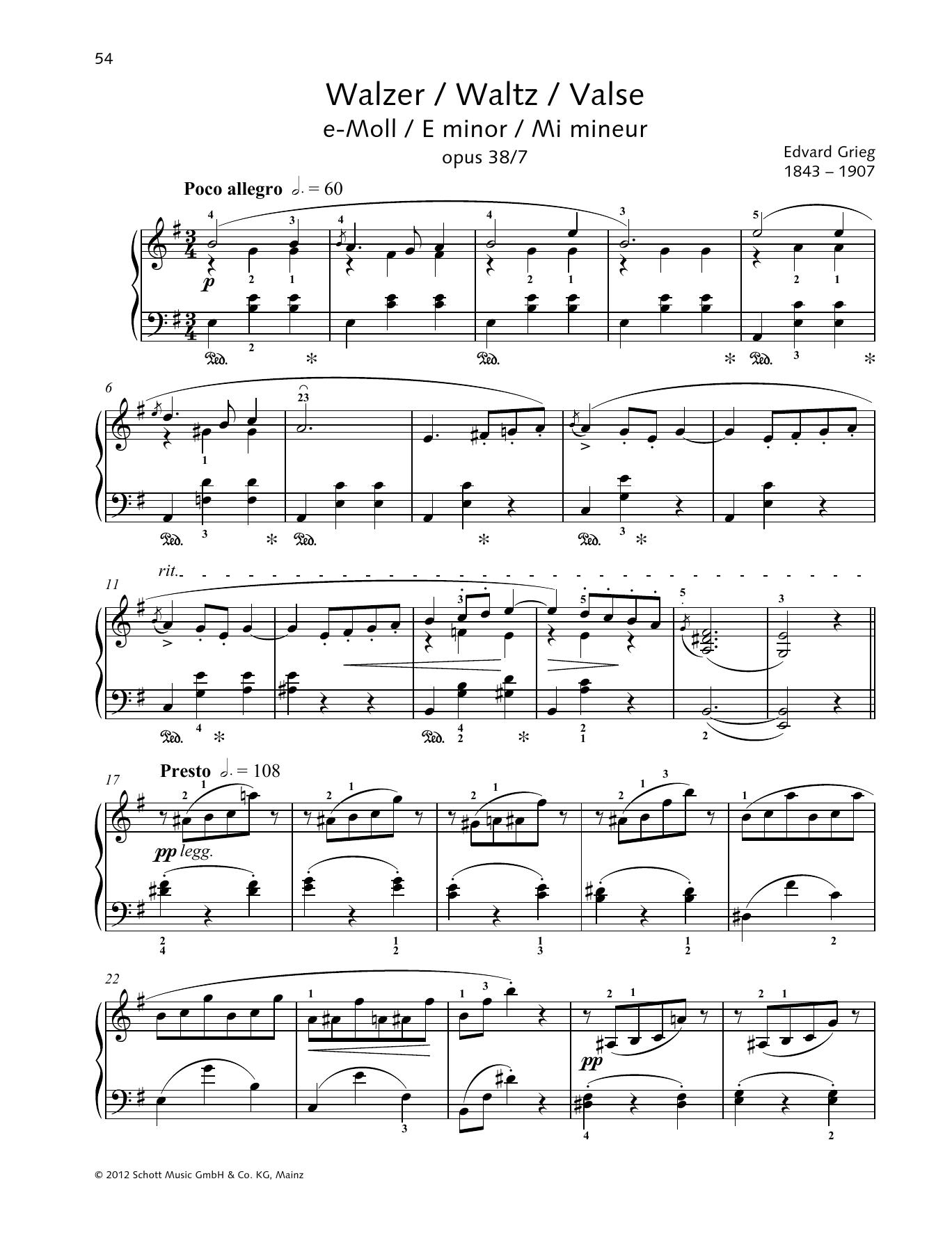 Waltz E minor Sheet Music