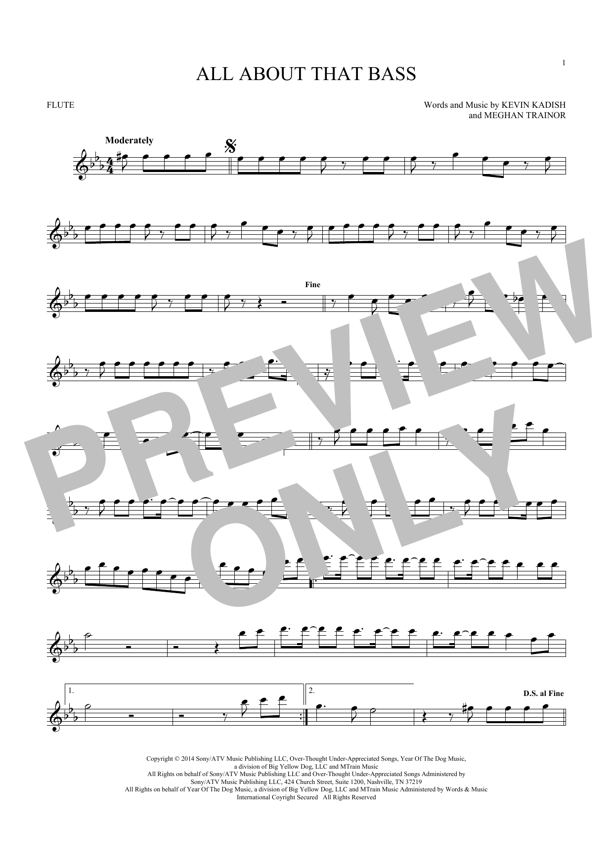 All About That Bass (Flute Solo)