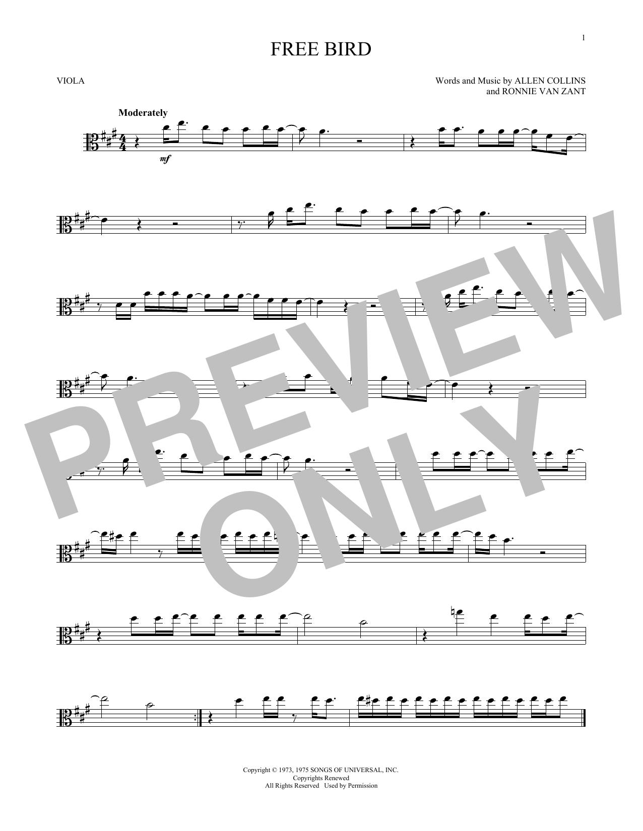 Free Bird (Viola Solo)