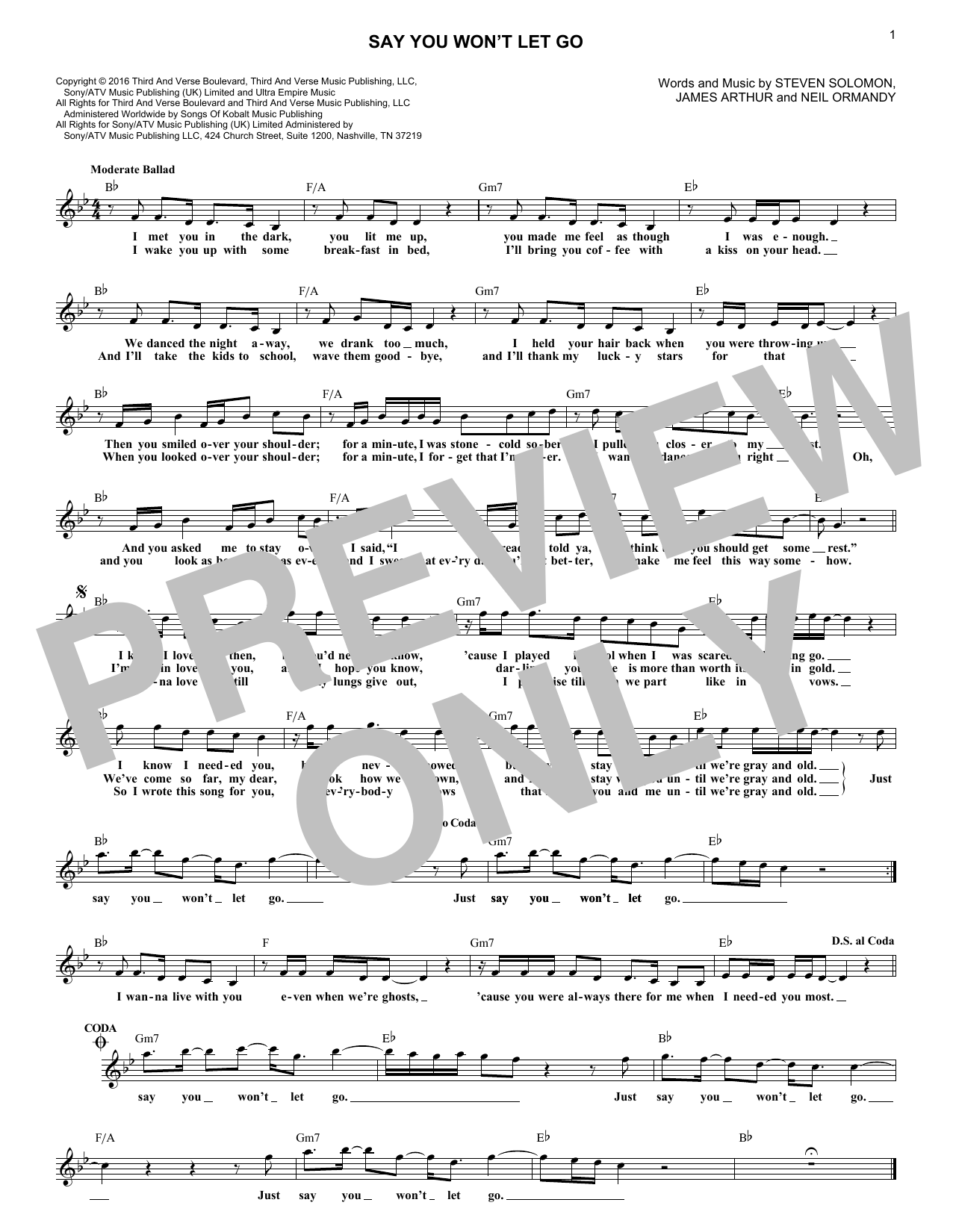Say You Won't Let Go (Lead Sheet / Fake Book)