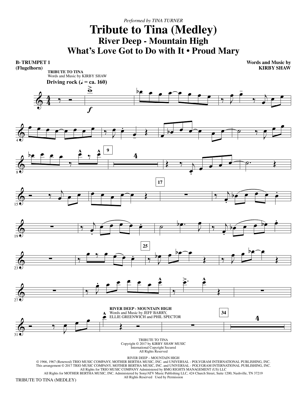 Tribute to Tina (complete set of parts) sheet music for orchestra/band by Tina Turner, John Fogerty and Kirby Shaw. Score Image Preview.