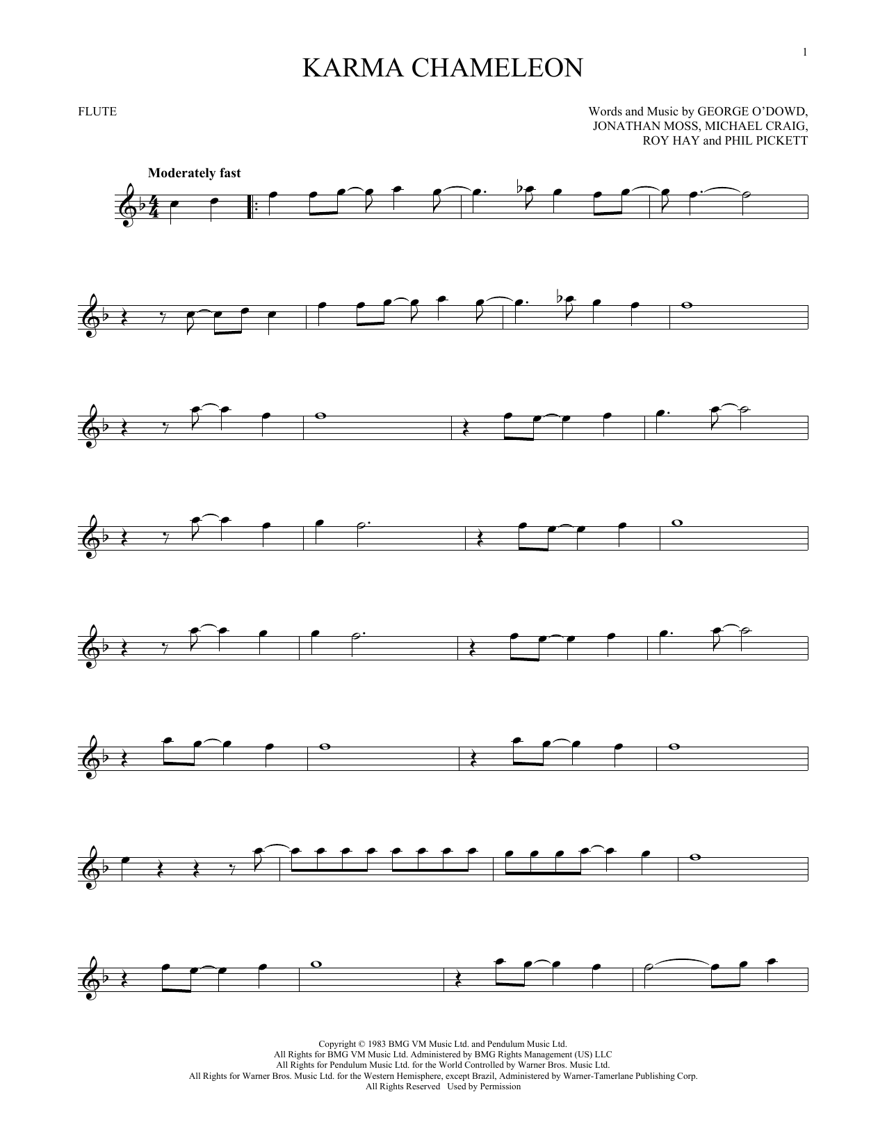Karma Chameleon (Flute Solo)