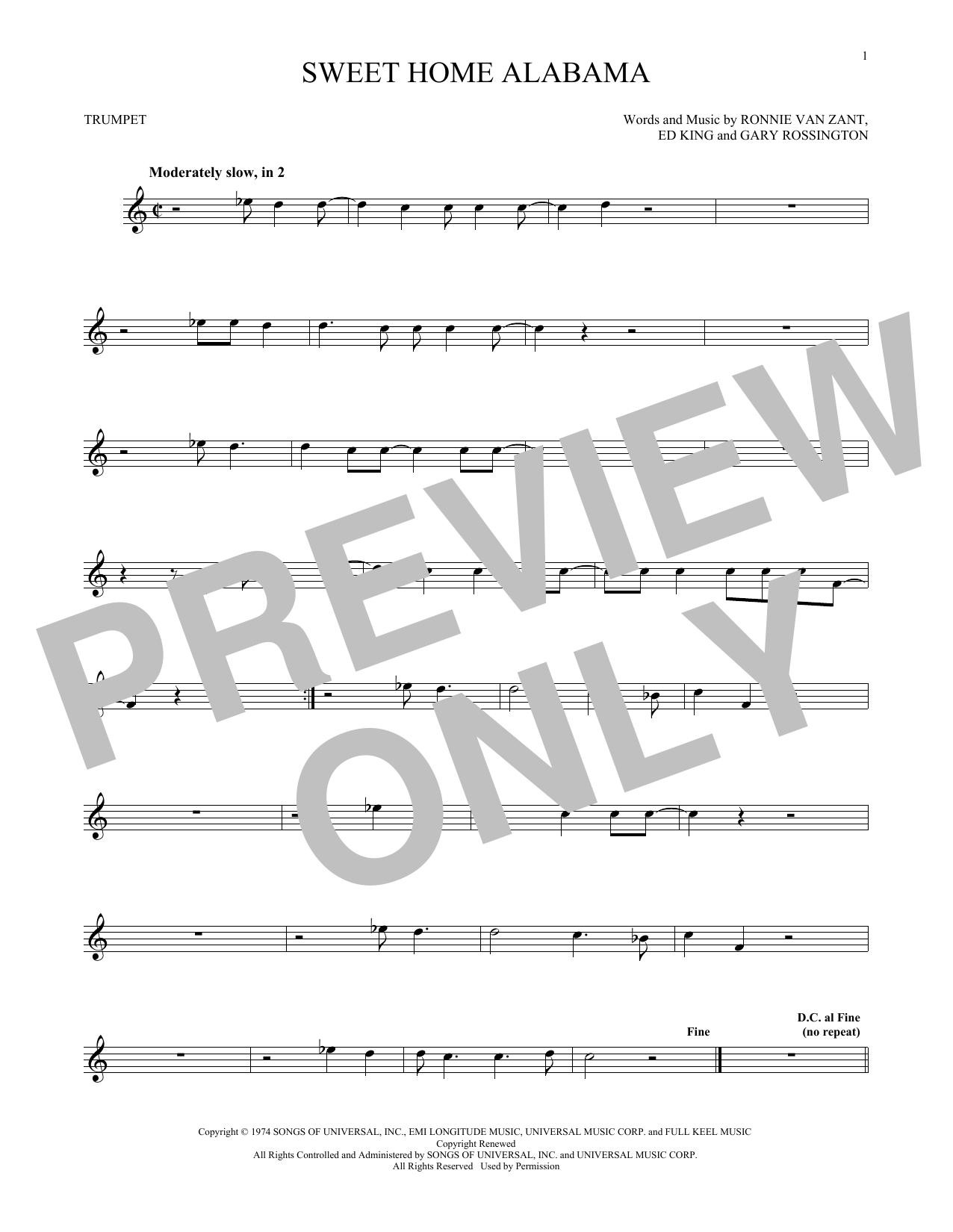 Sweet Home Alabama (Trumpet Solo)