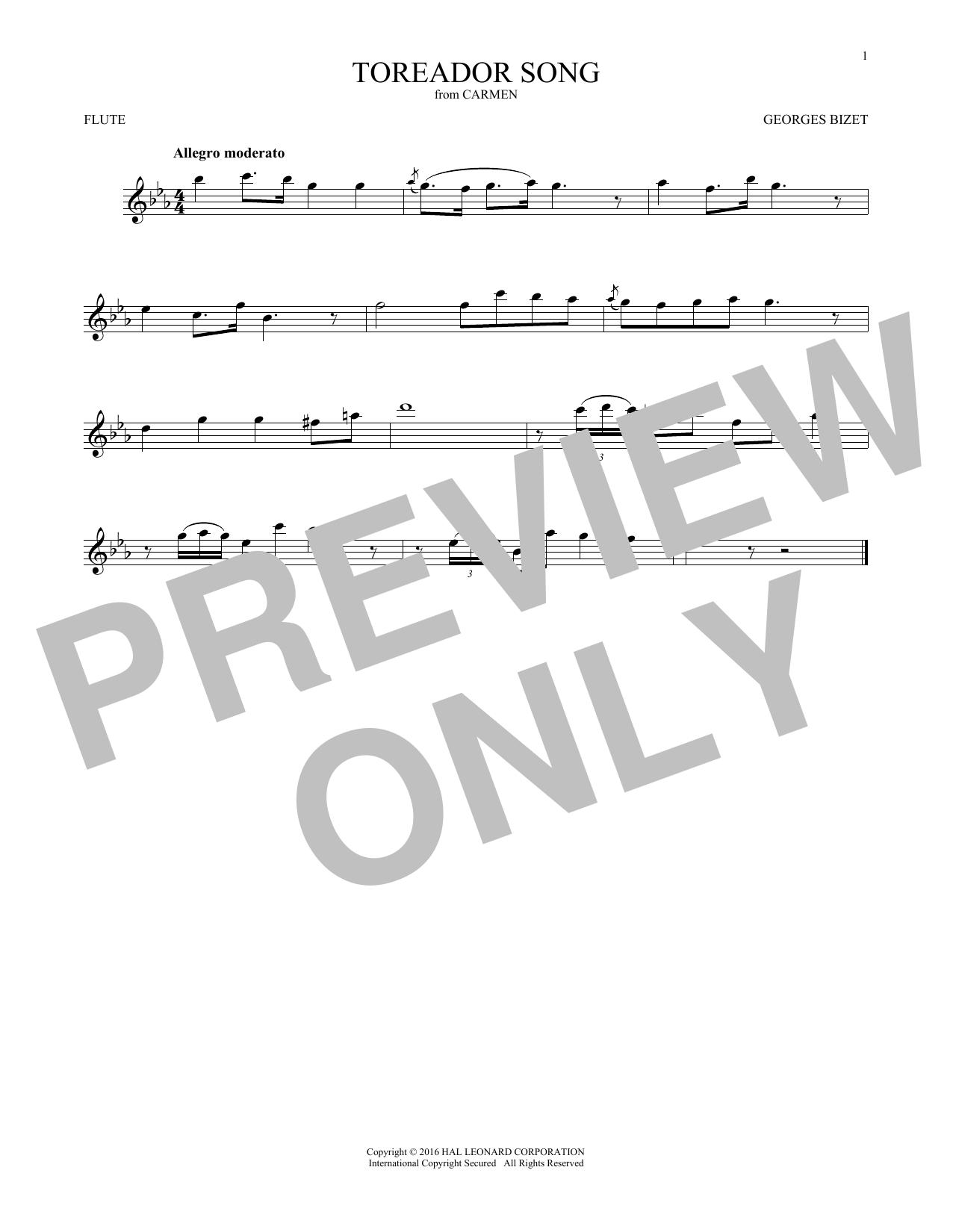 Toreador Song (Flute Solo)