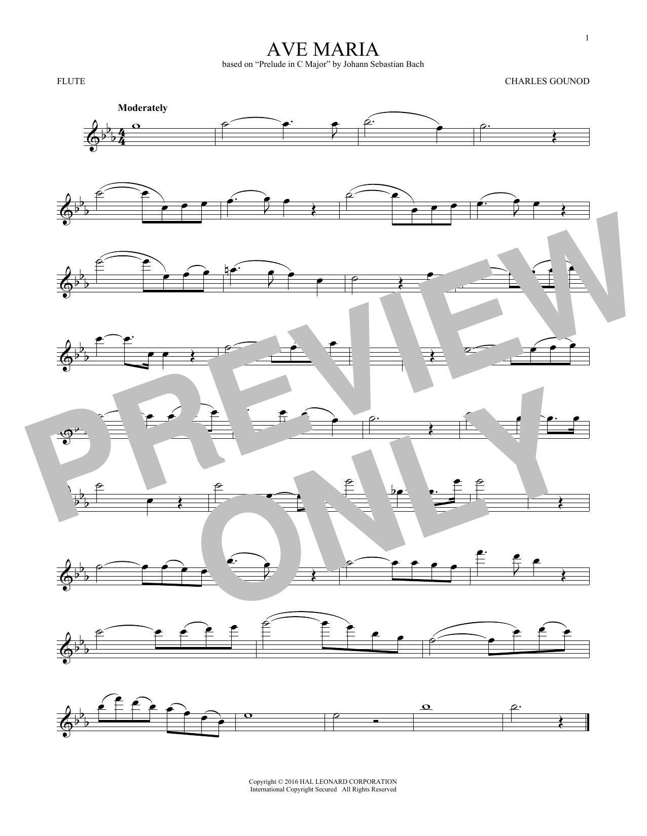 Ave Maria (Flute Solo)