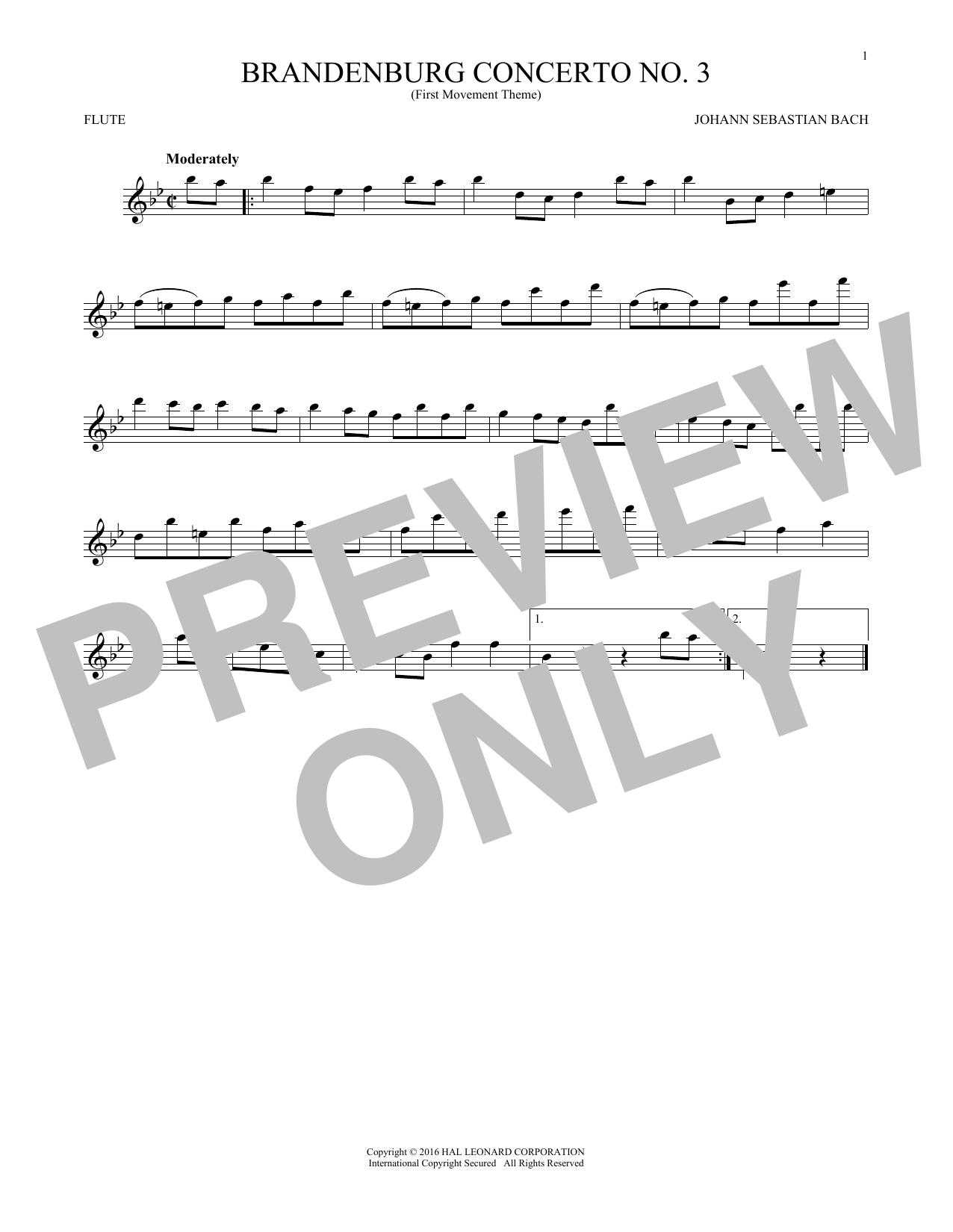 Brandenburg Concerto No. 3 (Flute Solo)