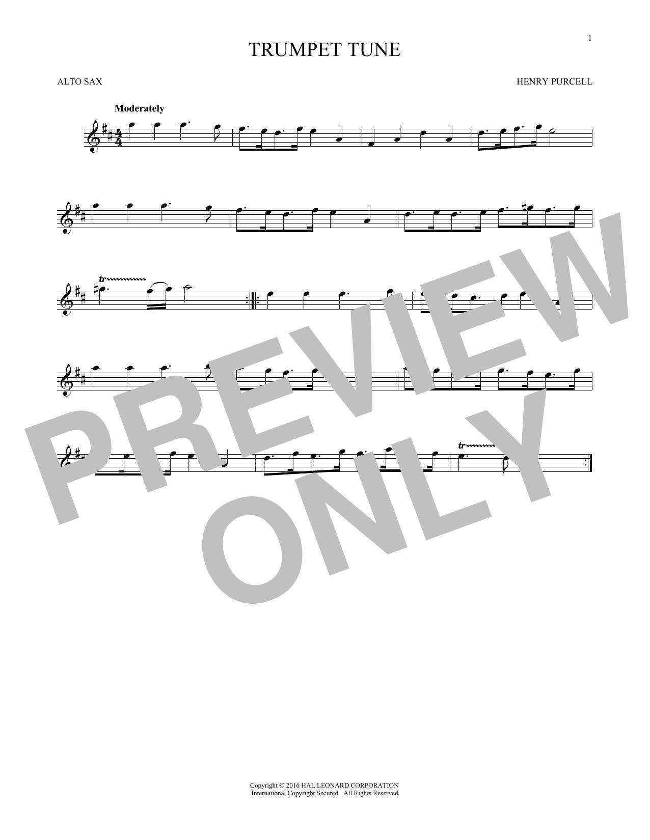 Trumpet Tune (Alto Sax Solo)