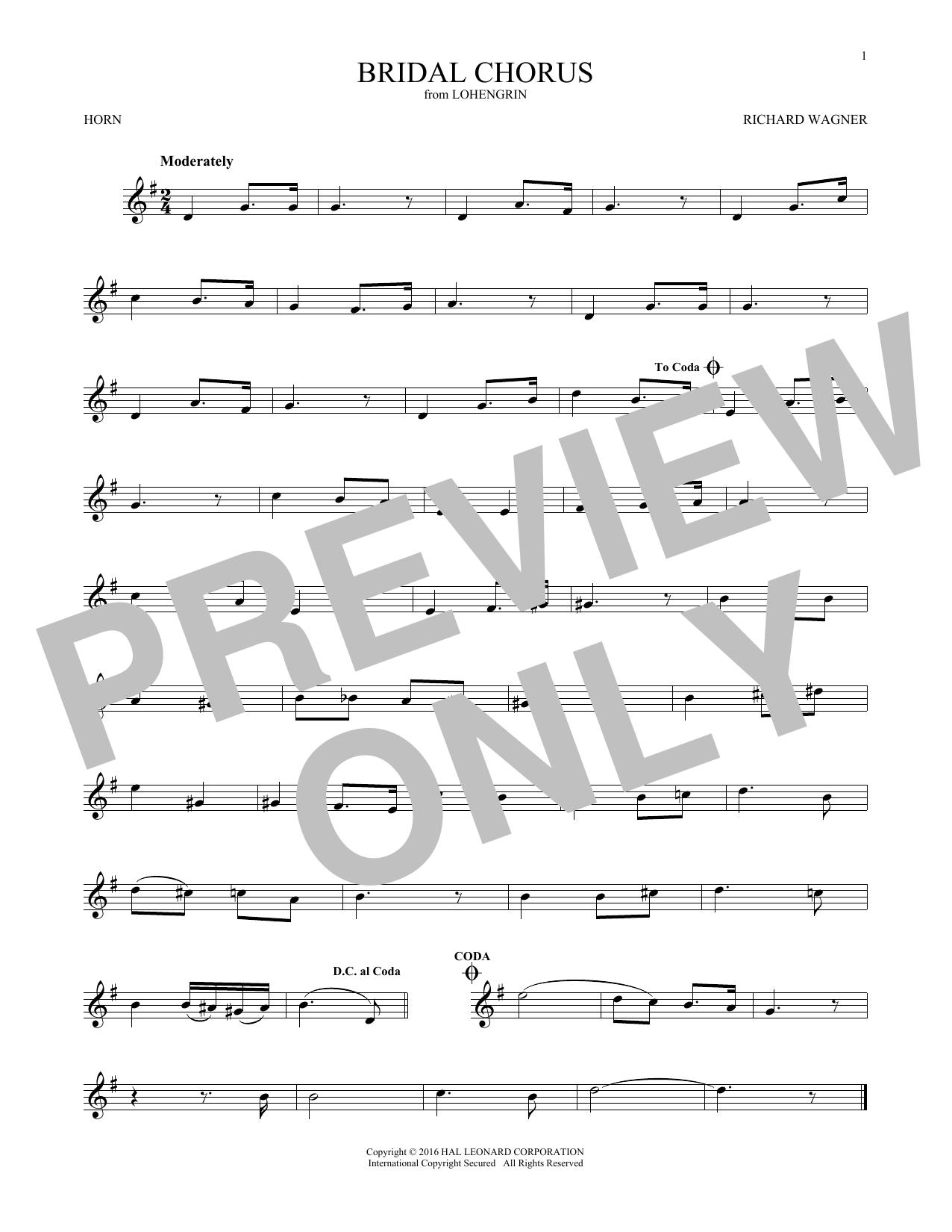 Bridal Chorus (French Horn Solo)