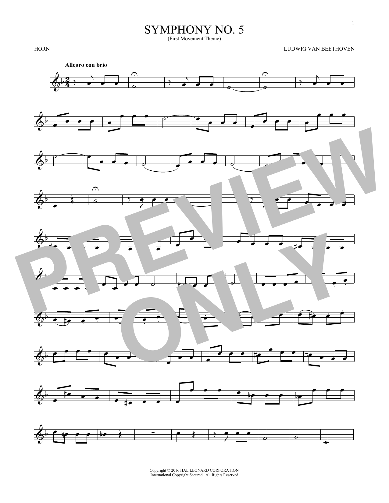 Symphony No. 5 In C Minor, First Movement Excerpt (French Horn Solo)