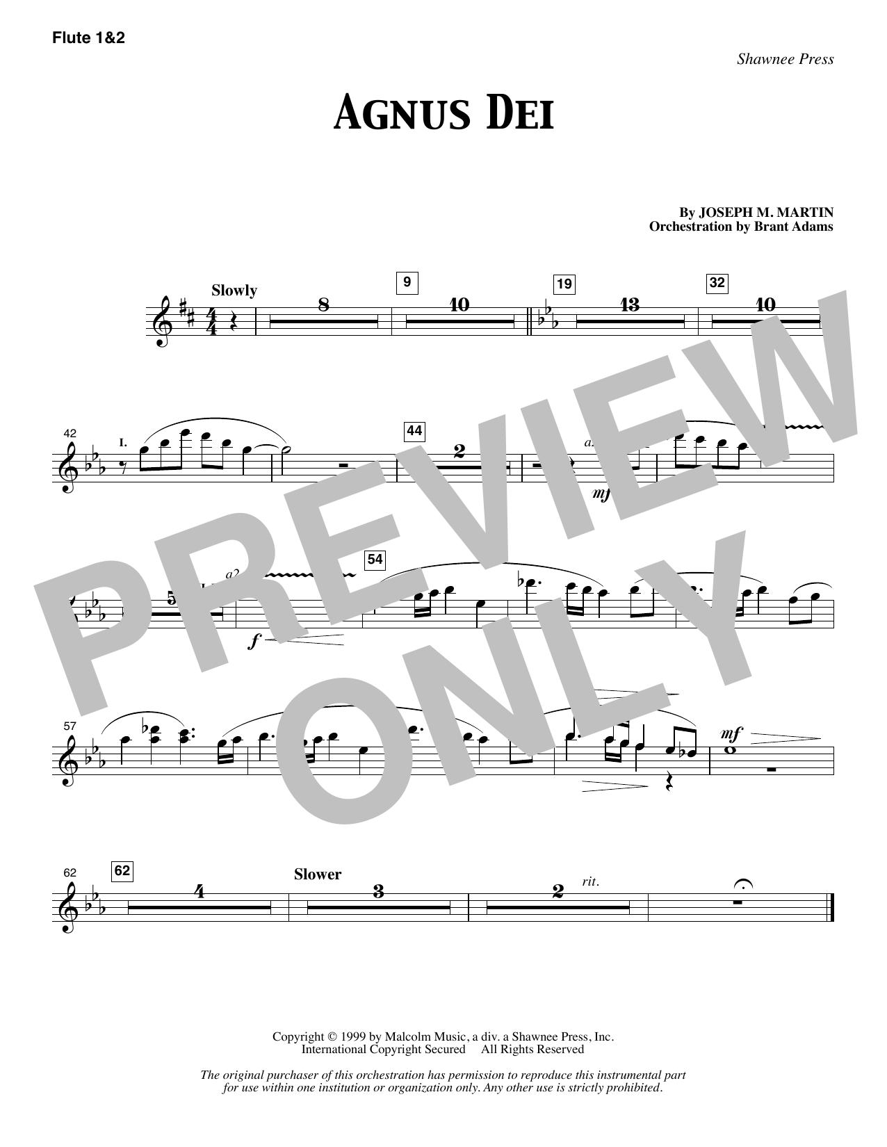 Agnus Dei - Flute 1 & 2 (Choir Instrumental Pak)
