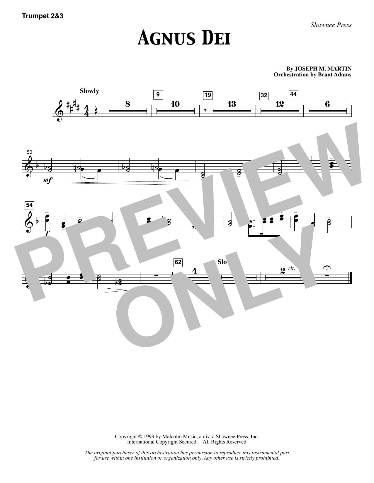 Agnus Dei - Bb Trumpet 2,3 (Choir Instrumental Pak)