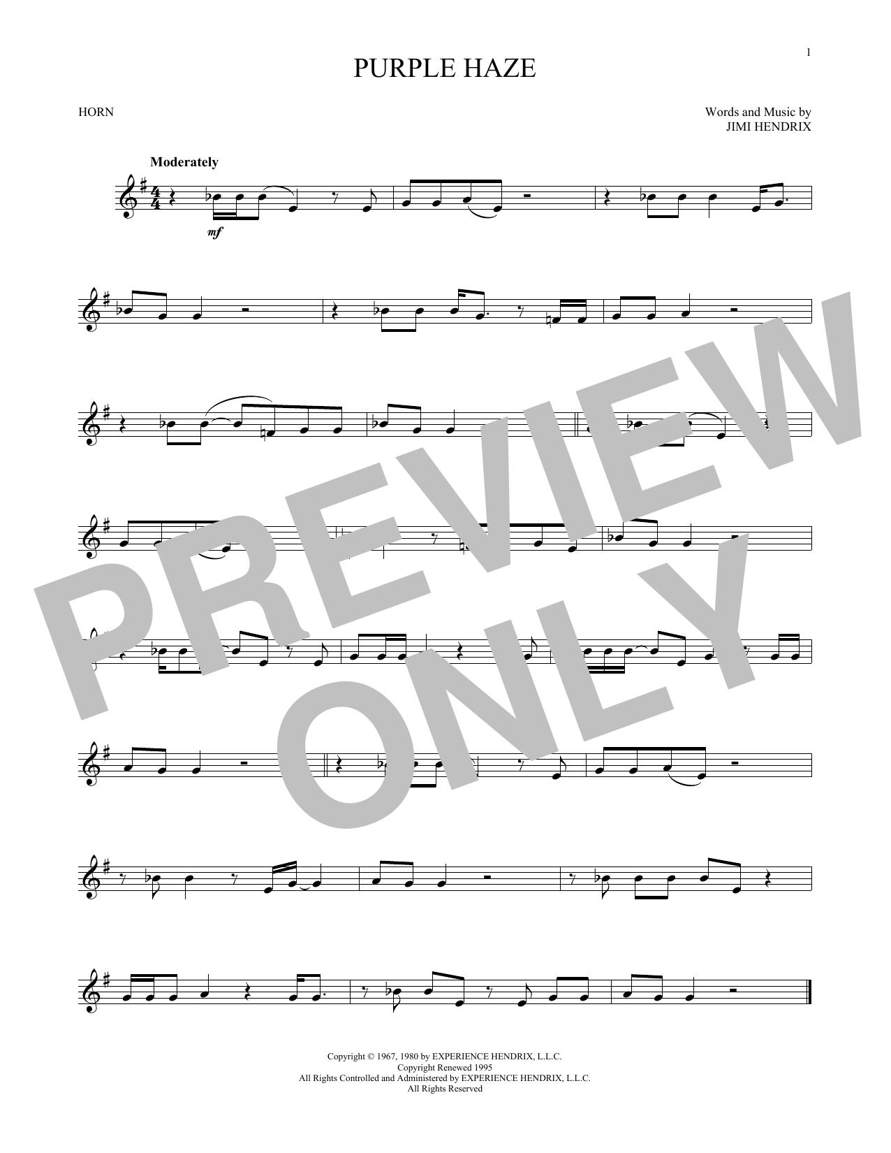 Purple Haze (French Horn Solo)