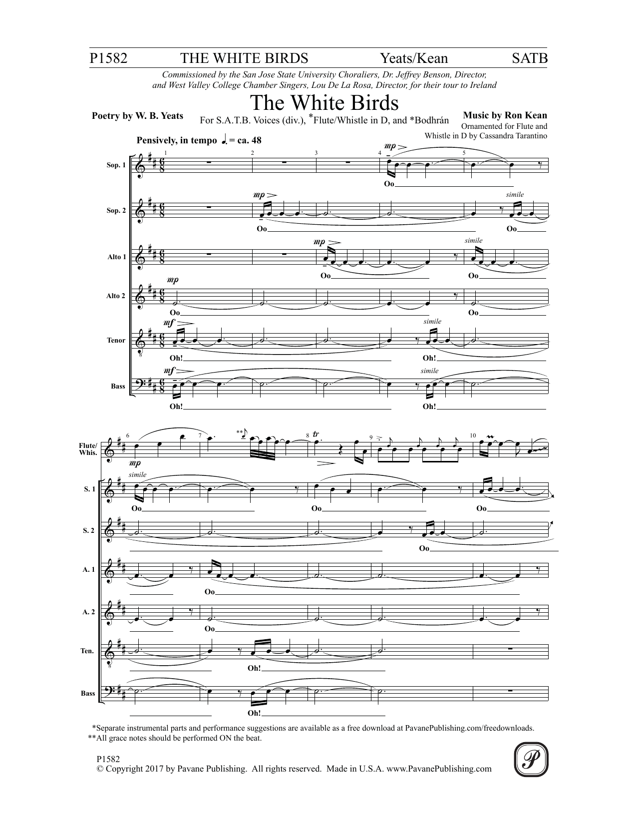 The White Birds Sheet Music