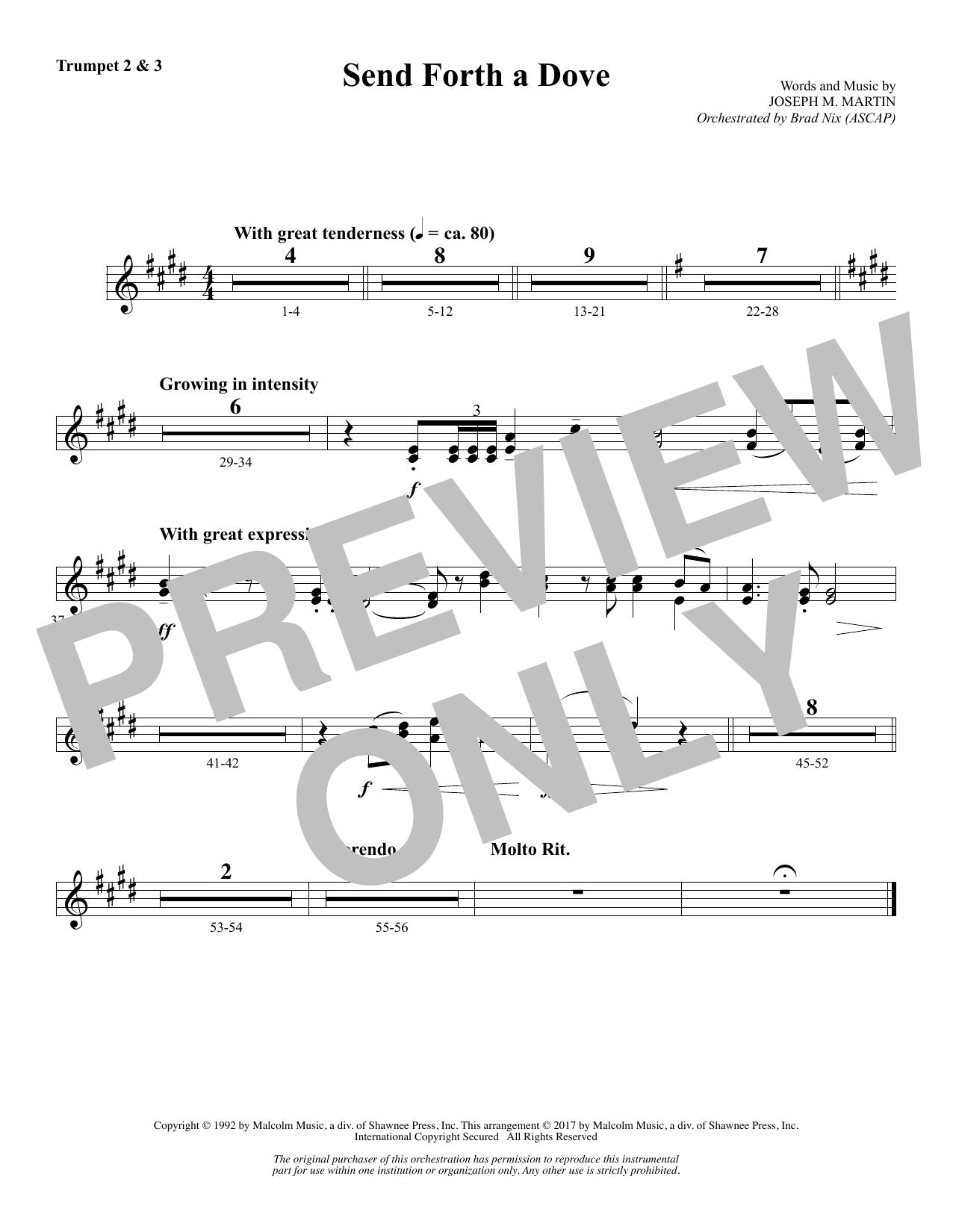 Send Forth a Dove - Bb Trumpet 2,3 (Choir Instrumental Pak)