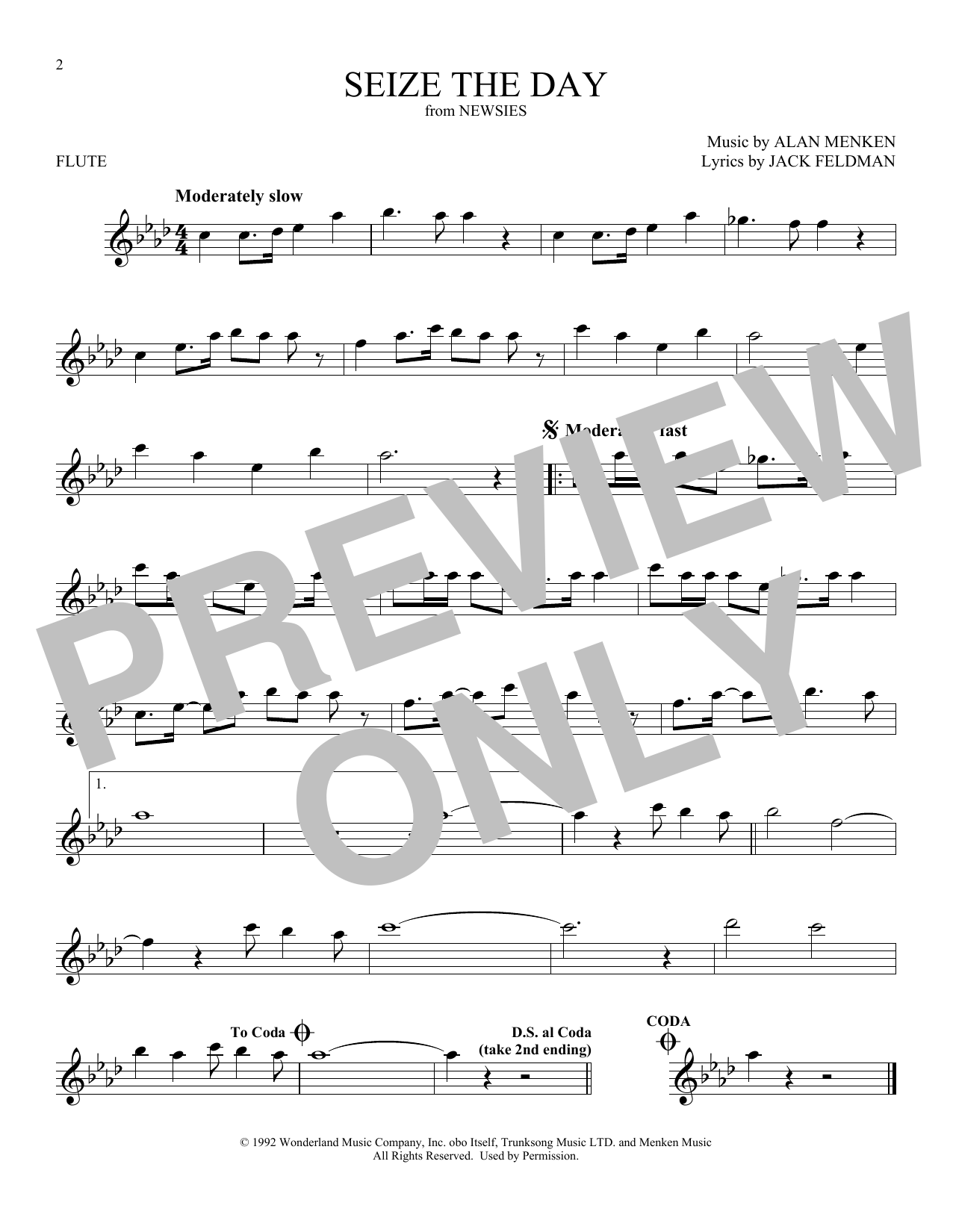 Seize The Day (from Newsies) (Flute Solo)