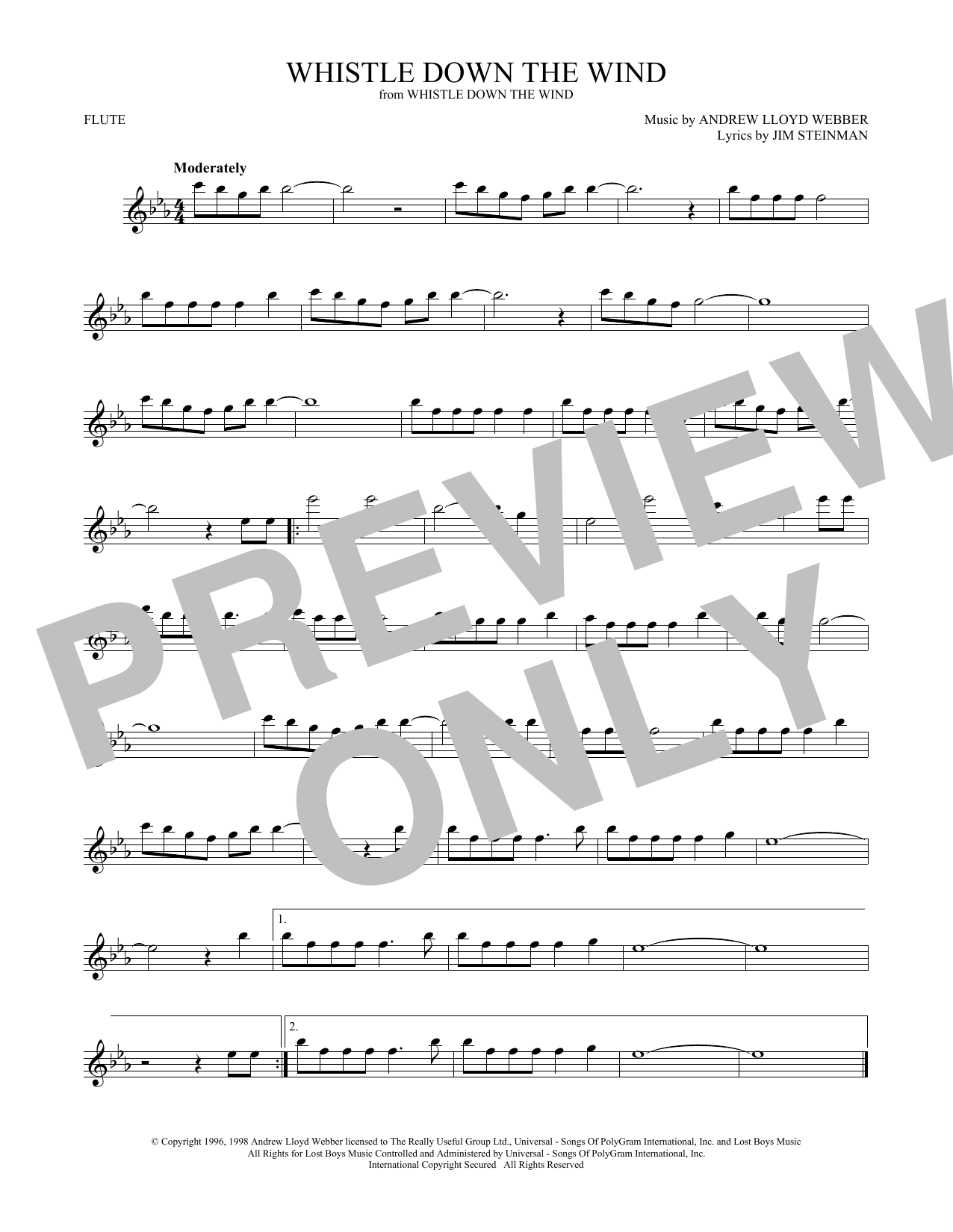 Whistle Down The Wind (Flute Solo)
